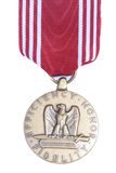 медаль почетности точности воспроизведения Стоковое Изображение RF