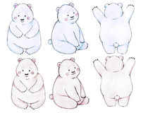 медведи младенца Стоковая Фотография RF