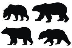 медведи Стоковые Фото