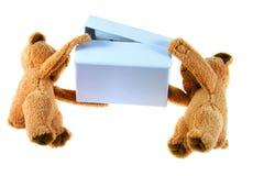 медведи Стоковые Изображения RF