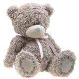 медведь изолированный над белизной игрушки Стоковые Фото