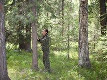 Медведь меток когтя Стоковая Фотография