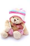 медведь одевает зиму игрушечного Стоковая Фотография
