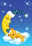 медведь спит игрушечный Стоковые Фотографии RF