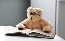 медведь 08 Стоковое Изображение RF