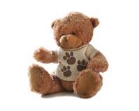 медведь 09 Стоковая Фотография