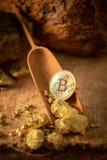 Медицинский осмотр bitcoin золота и зерна золотого самородка Выкрик минирования концепции стоковое изображение
