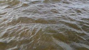 Медленное движение воды от моря сток-видео