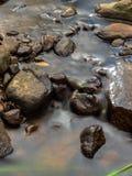 Медленный поток реки стоковые фото