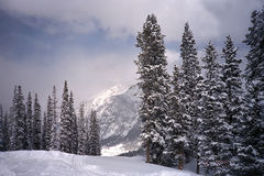 медная лыжа бега горы стоковые изображения