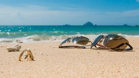 Медовый месяц на тропическом острове, 2 обручальных кольцах и солнечных очках Стоковые Фото