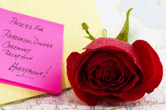 медовый месяц Стоковые Фотографии RF