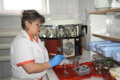 Медсестра в медицинской лаборатории стоковые фотографии rf