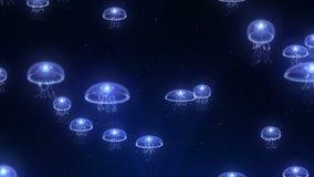 Медузы загорелись со светом цвета в подводном Дневной цвет под светами Анимация петли CG иллюстрация вектора