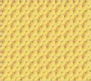 мед гребней Иллюстрация штока