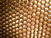 мед гребня Стоковые Фотографии RF