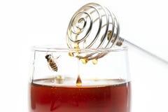 Мед и ручка меда на белой предпосылке стоковое фото rf