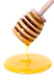 мед капания dipper Стоковая Фотография