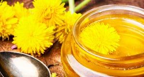 Мед одуванчика в опарнике стоковая фотография rf