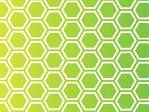 мед предпосылки иллюстрация вектора