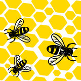 мед пчел Стоковые Фотографии RF