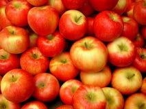 мед хрустящей корочки яблок Стоковое фото RF