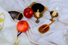 Мед, яблоко и гранатовое дерево для традиционного шофара праздника jewesh hashanah rosh символов праздника на столешнице стоковое изображение rf