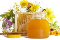 мед Стоковые Изображения RF