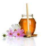 мед Стоковые Фото