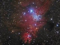 Межзвёздное облако конуса Стоковые Изображения