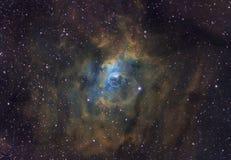 Межзвёздное облако пузыря Стоковое Фото