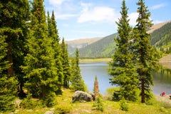 Между деревьями озера зеркал в пропуске Tincup, Колорадо, США Стоковое Изображение