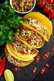 Мексиканская еда - очень вкусные раковины тако с говяжим фаршем и домом сделали сальсу стоковые фото