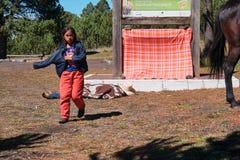 Мексиканская маленькая девочка с паломниками верхом стоковая фотография rf