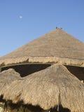 мексиканская сторновка крыши Стоковые Изображения