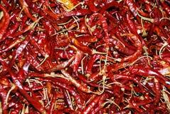 мексиканские перцы красные Стоковые Фотографии RF