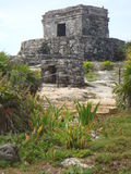 мексиканские руины Стоковые Фото