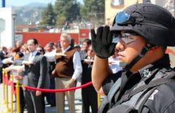 Мексиканские салюты офицера к мексиканскому флагу Стоковые Изображения RF