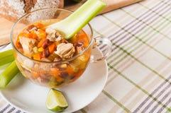 Мексиканский суп с цыпленком, сельдереем и овощами Стоковое фото RF