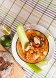 Мексиканский суп с цыпленком, сельдереем и овощами Стоковые Изображения