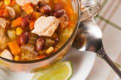 Мексиканский суп с цыпленком, сельдереем и овощами Стоковая Фотография RF
