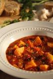 Мексиканский суп Стоковая Фотография
