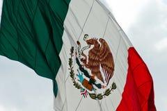 Мексиканский флаг Стоковое Изображение RF