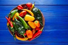 Мексиканское смешивание перцев горячего chili красочное Стоковое Фото