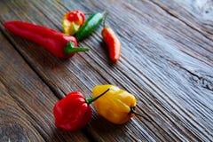 Мексиканское смешивание перцев горячего chili красочное Стоковое фото RF