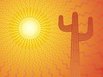 мексиканское солнце Стоковая Фотография RF
