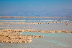 Мелководное море покрыто с солью стоковое фото rf