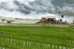 Мельница риса в середине долины стоковая фотография