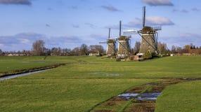 3 мельницы Leidschendam Stompwijk в ландшафте голландца Стоковое фото RF
