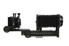 Мембраны макроса камеры стоковые фотографии rf